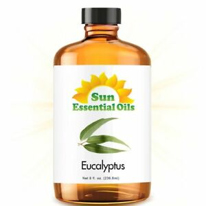 Best Eucalyptus Essential Oil 100% Purely Natural Therapeutic Grade 8oz