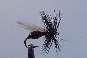 10-x-Mouche-de-peche-Seche-Fourmi-Noir-F-D-H12-14-16-18-dry-fly-ant-black-mosca