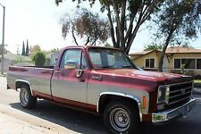 FTCH209 -  73-87 Chevy C10 C20 C30 Full Size Pick Up Stainless Steel Fender Trim