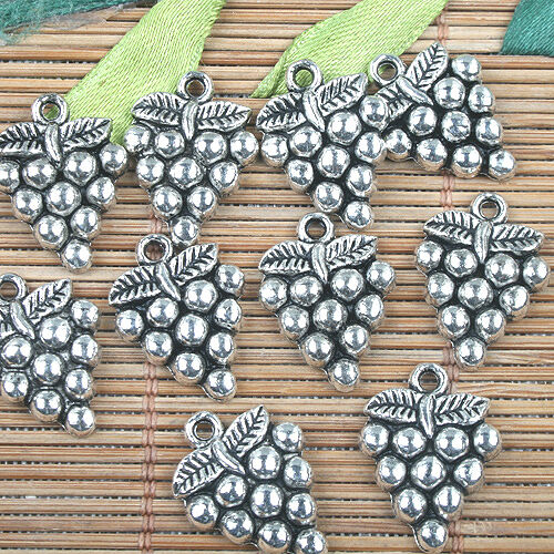 Alloy Metal Tibetan Silver Color raisin Design Charms 16pcs EF0141