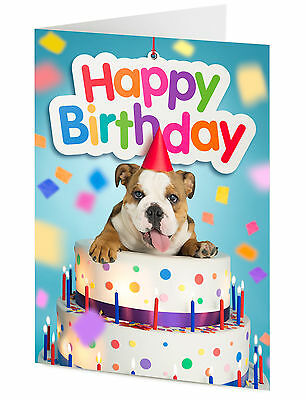Astounding Happy Birthday English Bulldog In Party Hat Emerges From Giant Personalised Birthday Cards Fashionlily Jamesorg