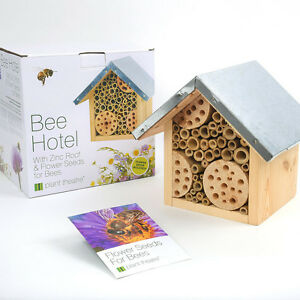 En bois abeille Hotel &amp; graines de fleurs insectes zinc Maison Nid Maison Plante Cadeau de Noël  </span>