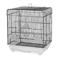 Kings Cages Es 2016 S Square Top Bird Cage Toy Toys Finches Lovebirds Canaries