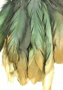 """25+ BLACK GOLD TIP IRIDESCENT ROOSTER COQUE TAIL FEATHER 8""""-10""""L"""
