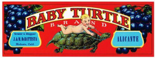 GENUINE 1950S CRATE LABEL VINTAGE WINE PRESS GRAPES BABY TURTLE TODDLER MODESTO