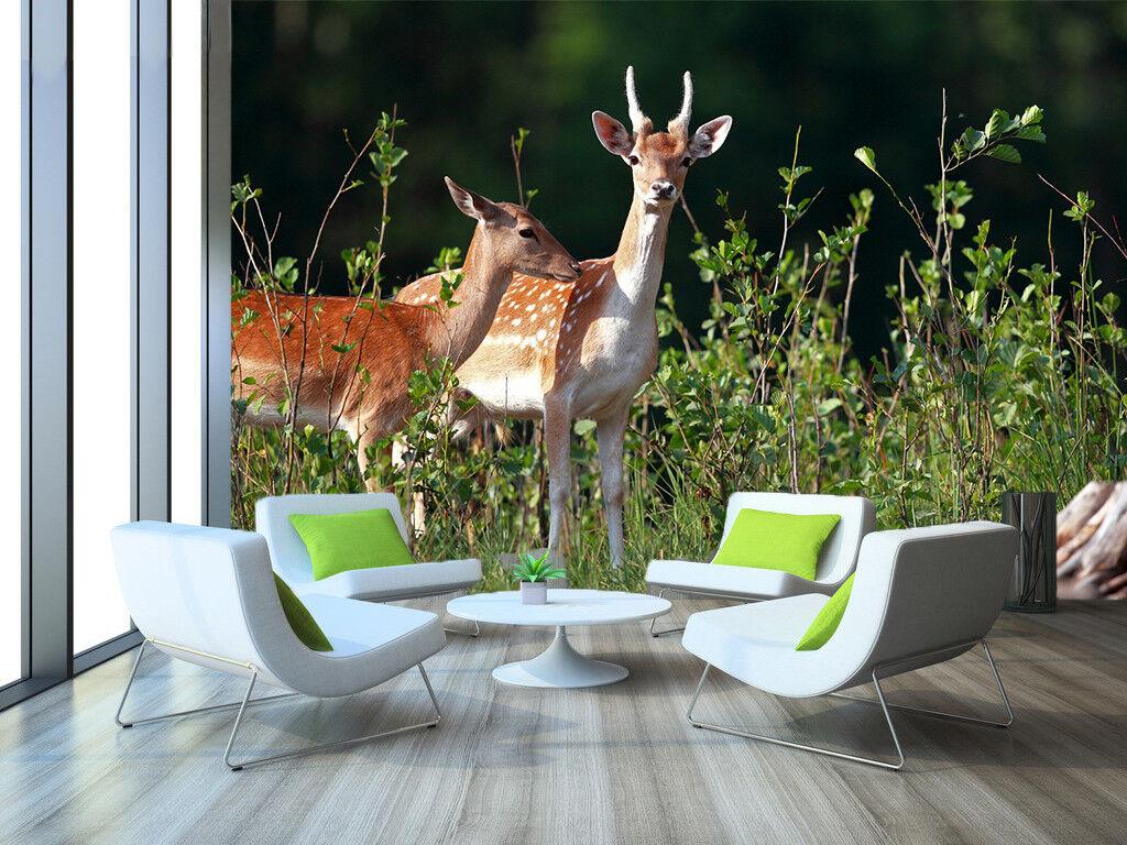 3D Cute Deers Plants 7 Wall Paper Murals Wall Print Wall Wallpaper Mural AU Kyra