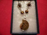 Ammonite, South African Tigers Eye Necklace In Stainless Steel-24-20.00 Ctw