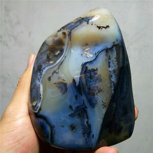 858g Polished Phantom dendritic Banded agate Geode Palm Stone-Madagascar