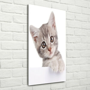 Wandbild-Kunst-Druck-auf-Hart-Glas-hochkant-70x140-Graue-Katze