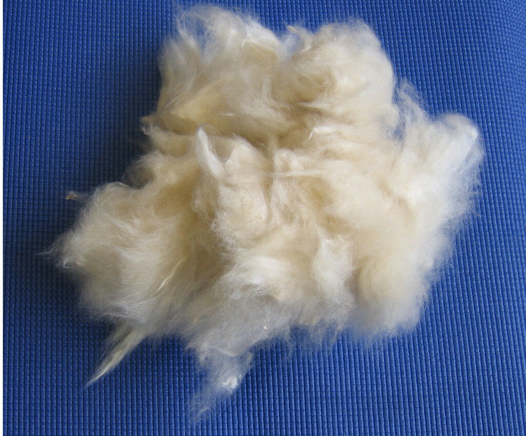 Kapok als Füllmaterial   Nachstopfen 5 Kg lose extra fine  | Shopping Online