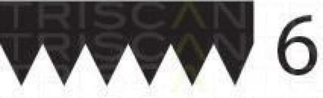Keilrippenriemen TRISCAN 8640601555 für AUDI BMW CHEVROLET FORD MASERATI OPEL