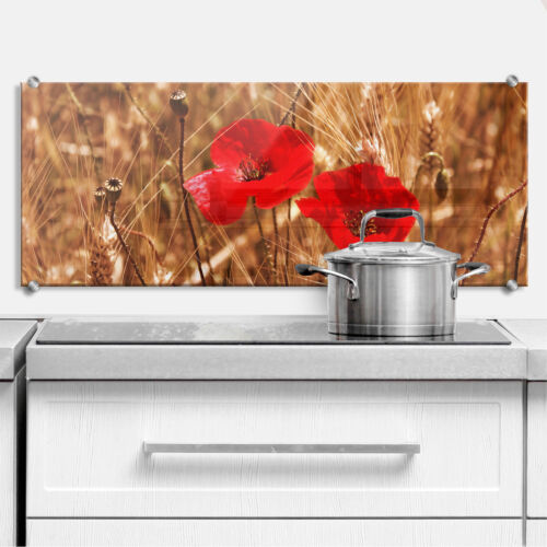 Küchenrückwand Mohnblüten im Feld Panorama