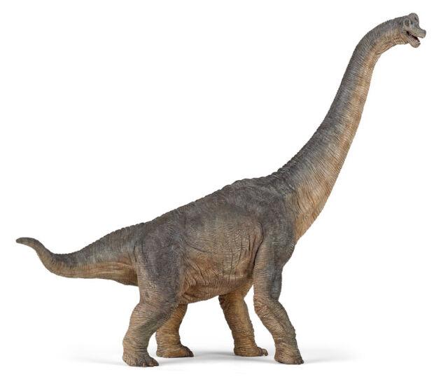 NEW PAPO 55030 Brachiosaurus Dinosaur - Dino - with tags - museum quality detail