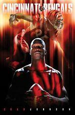 Chad Johnson Bengals Costacos Poster Super Bowl? OCHOCINCO New England Patriots