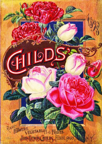 1898 Childs Roses Vintage Flowers Seed Packet Catalogue Advertisement Poster