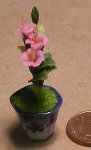 1:12 Scale Handmade Pink Orchid In A Pot Tumdee Dolls House Flower Accessory O2
