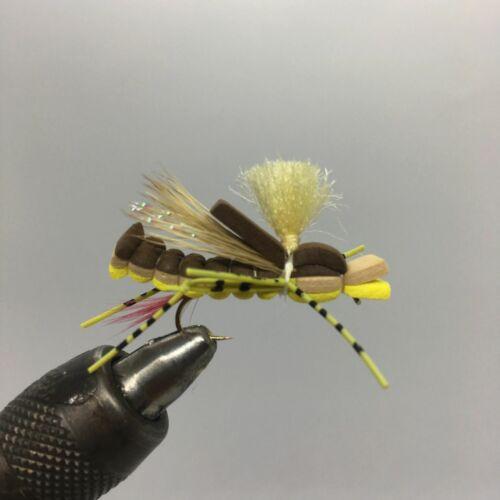 12 Terrestrial Yellow One Dozen - Sandwhich Hopper