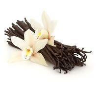 "30 Gourmet Vanilla Beans Grade A Black Madagascar Planifolia Bourbon 6-7"""