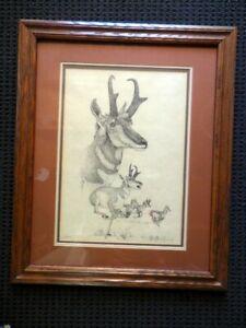 WESTERN-ARTIST-EARL-J-CACHO-PRONGHORN-ART-PRINT-SIGNED-2-1500-FRAMED-amp-MATTED