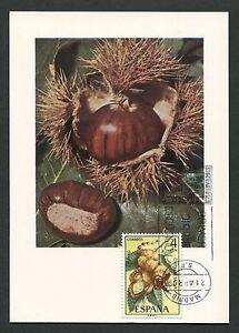 Espagne Mk 1975 Flore Fruits Fruits Fruit Carte Maximum Card Mc Cm D3751-afficher Le Titre D'origine Couleurs Harmonieuses