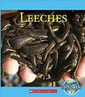 Leeches by Katie Marsico (Paperback / softback, 2015)