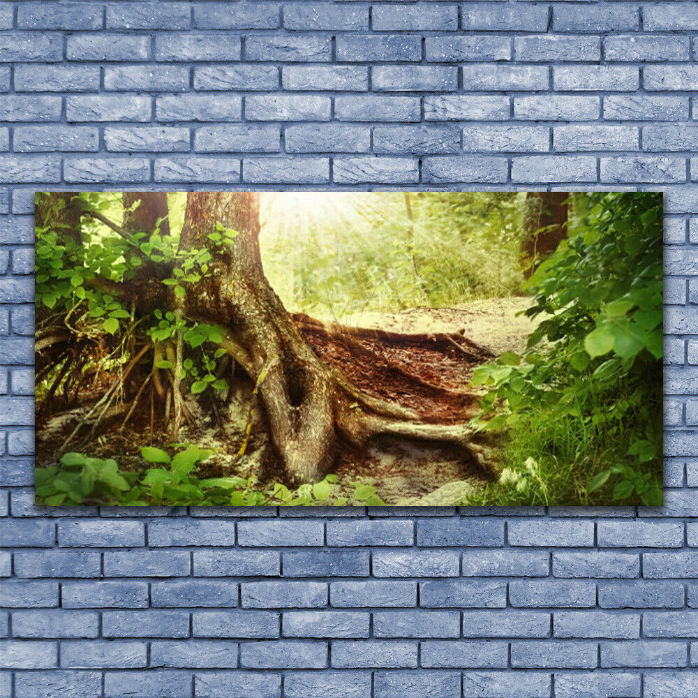 Print on Glass Wall art 140x70 Picture Image Tree Trunk Nature