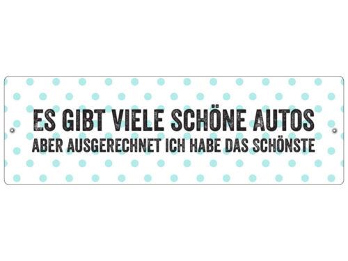 Kunststoffschild mit Saugnapf ES GIBT VIELE SCHÖNE AUTOS Lustig Autoschild