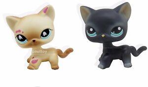 2pcs-Littlest-Pet-Shop-RARE-Black-amp-Yellow-Cream-Cat-Green-Eyes-LPS-816-994
