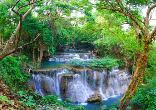 GREEN SPRING FOREST WATERFALL RIVER Photo Wallpaper Wall Mural 335x236cm