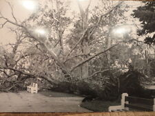 Kalamazoo MI May 13 1980 Post Card Tornado Hits Black & White CITY PARK