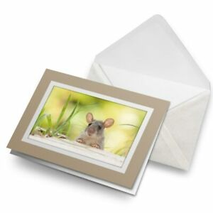 Greetings-Card-Biege-Wild-Little-Mouse-Animal-Small-Pet-15974