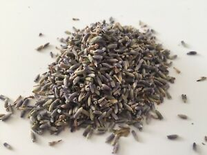 Loose-Dried-Lavender-10g-25g-50g-or-100g