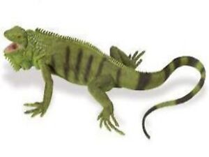 Grüner Leguan 25 cm Serie Unglaubliche Kreaturen Safari Ltd 267729