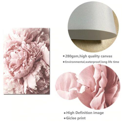 BLUSH ROSE Flower Canvas Art Painting Prints /& Home Decor