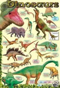 Dinosaurs-Educational-Prehistoric-Poster-0081