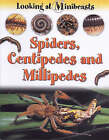 Spiders, Centipedes and Millipedes by Sally Morgan (Paperback, 2002)