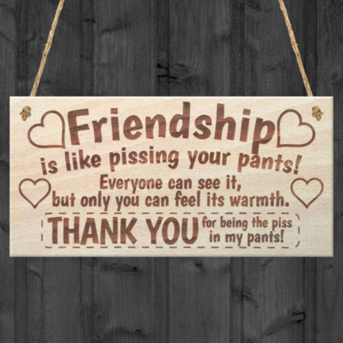 Friendship Sign Wooden Friend Plaque Shabby Chic Heart Gift Wine Tags Decor Gift