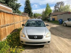 2002 Nissan Altima. The LAST used car you will ever have to buy!