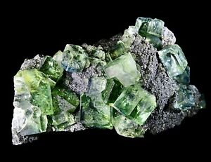 ULTRA-TRANSPARENT-Pristine-Light-Green-FLUORITE-Specimen-Tucson-Mineral-Show