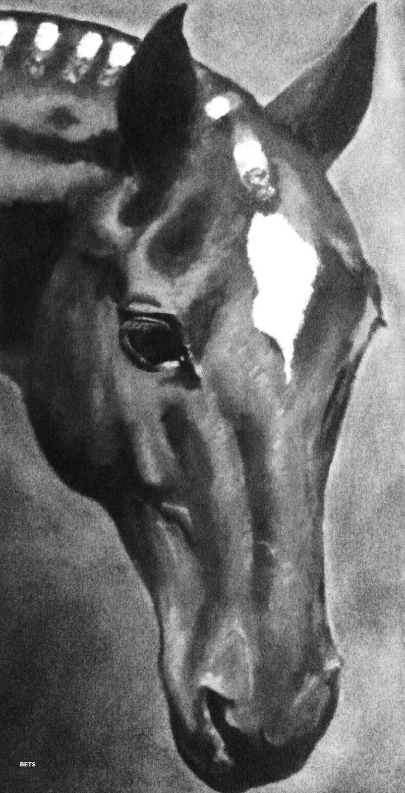 HORSE PRINT Giclee THOROUGHBROT Art Art THOROUGHBROT ROT artist BETS 4 COLORS print Größe 12 X21 42b3c4