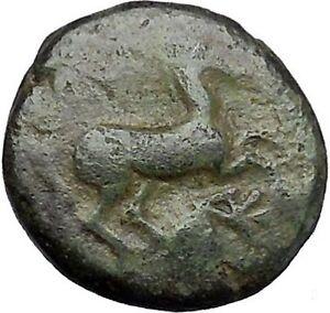 Maroneia-in-Thrace-400BC-Original-Ancient-Greek-Coin-Horse-Vine-Grapes-i48967