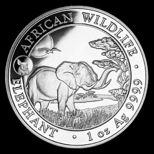 2019-Somalia-1-oz-Silver-Elephant-BU-Pig-Privy-SKU-179106
