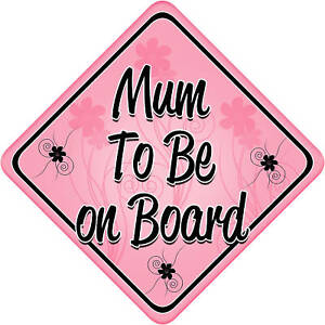 White//Pin PD/'s Unpersonalised Sisters On Board car sign Child // baby on board