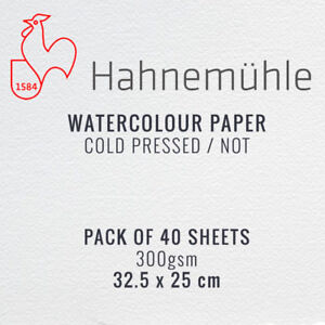 Hahnemuhle-Watercolour-Painting-Paper-Pack-of-40-Sheets-25-x-32-5cm-300gsm