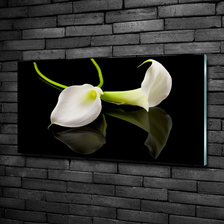 Wandbild aus Plexiglas® Druck auf Acryl 100x50 Blaumen & Pflanzen Zimmercalla