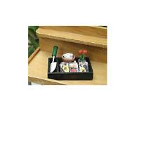 Miniature Dollhouse FAIRY GARDEN ~ Mini Gardening Set in Box Seeds Trowel ~ NEW