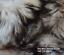 Sheepskin-rustic-stool-tabouret-hocker-sheepskin-Long-Wool-12-20cm-25-color thumbnail 7