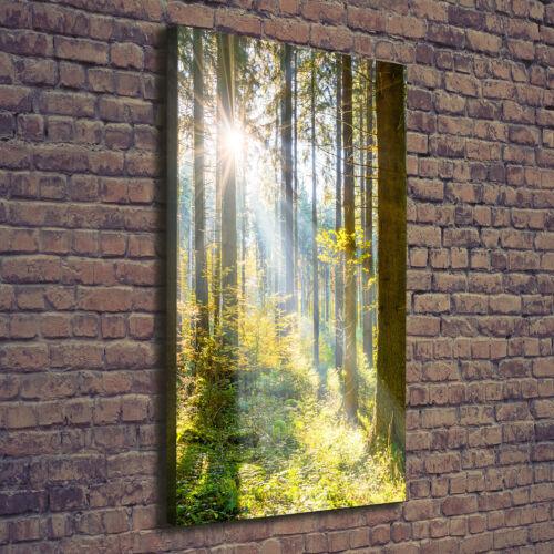 Leinwand-Bild Kunstdruck Hochformat 60x120 Bilder Sonne im Wald