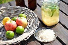 100g Wasserkefir 100% BIO Kefir Kefirkristalle gesund und lecker für 2 Liter