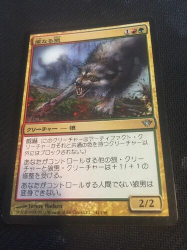 MTG 1x Immerwolf Japanese